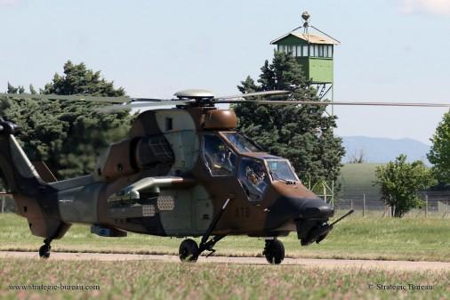 Tigre 103