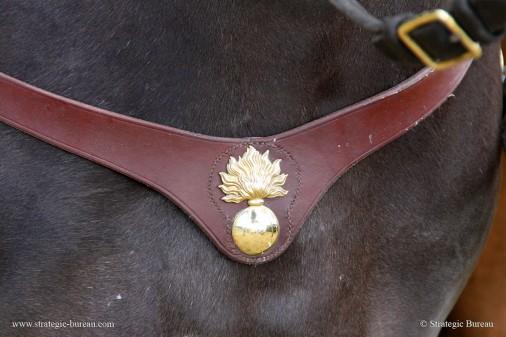 Garde a cheval 004