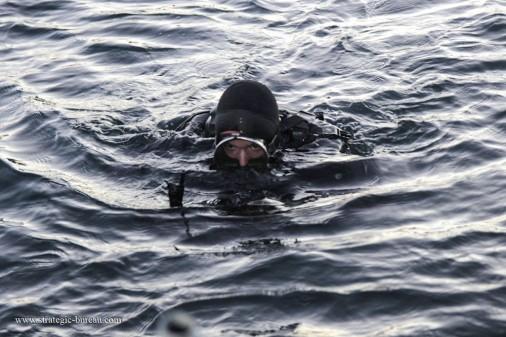 Plongeur_combat A003