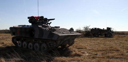 AMX-10P-003