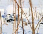 Sniper-russe-001