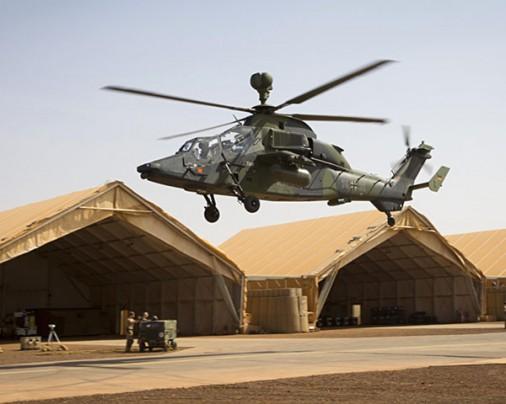 Tigre-Mali-000