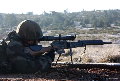 FRF2_fusil_sniper_A101