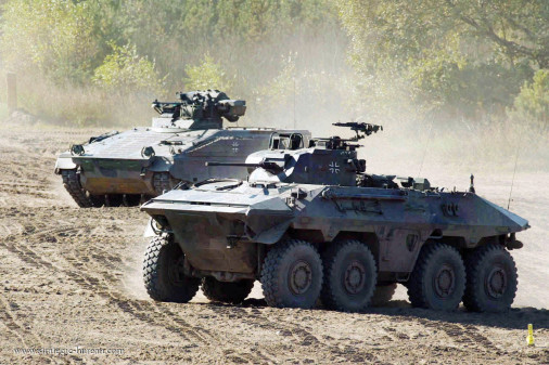 Luchs_reco_8x8_Allemagne_009