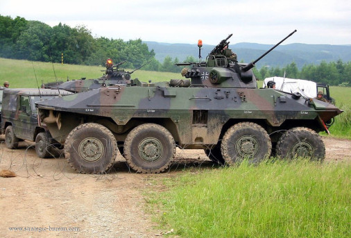 Luchs_reco_8x8_Allemagne_010